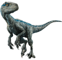 Fallen Kingdom: Blue the Velociraptor V4