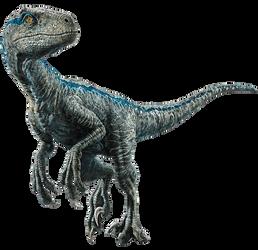 Fallen Kingdom: Blue the Velociraptor V4 by sonichedgehog2