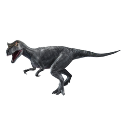 Jurassic World: Allosaurus by sonichedgehog2