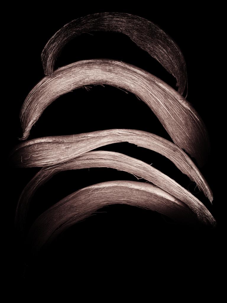 Curve03 by noddycar