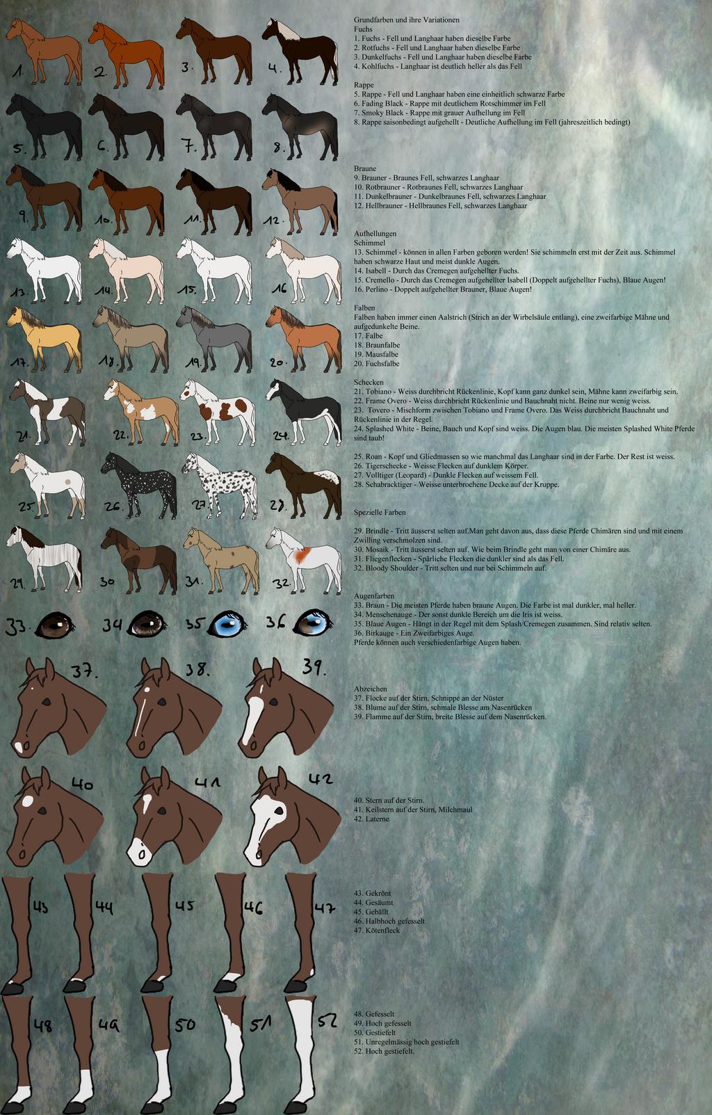 Zelter Pferd : Tutorial pferd teil farben und abzeichen by kjani on