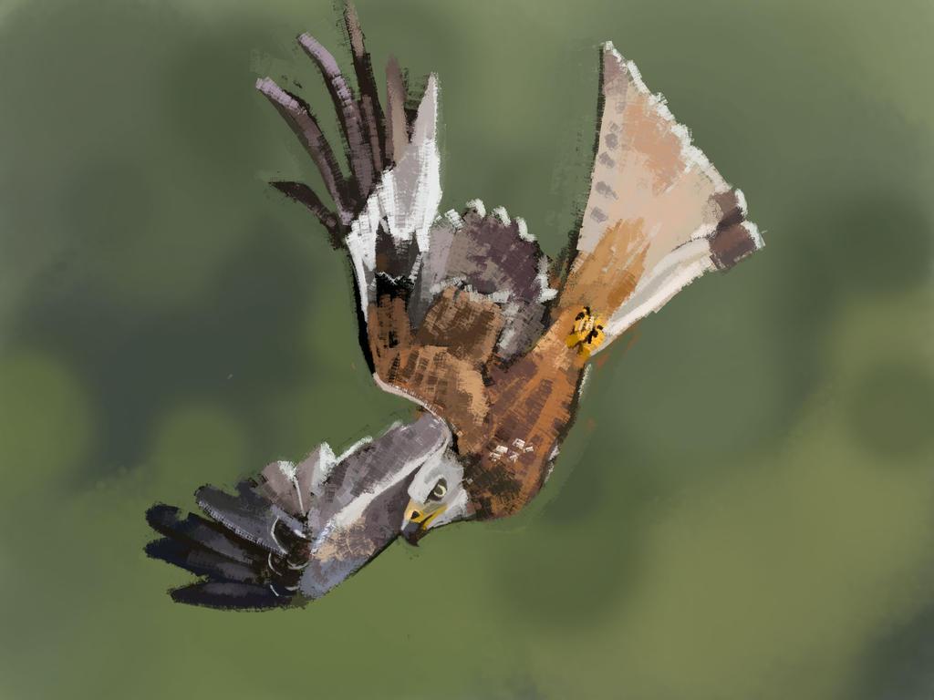 HARDWELL297: Fell Swoop by Hamsta180