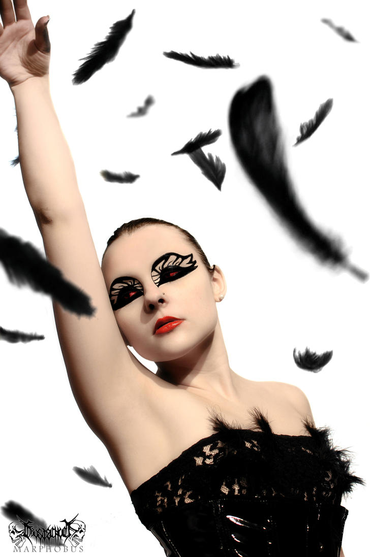 Black Swan V by Frostschock