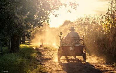 Hungarian farmer going home by Norrington1