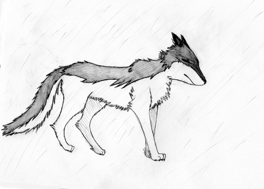 crying wolf drawing