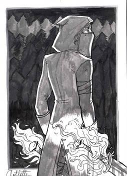 The Wandering Assassin