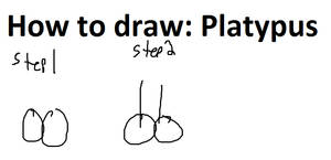 How To Draw: Platypus