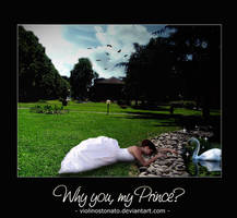 Why you, my Prince?