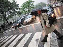 The Rainy Season by steeber