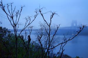 Misty GWB by steeber