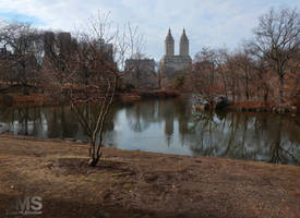 Central Park in February