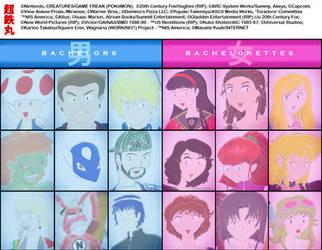 Summer 2014 Ballot Form 5 by Chotetsumaru