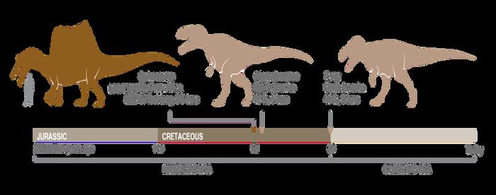Chart - Top 3 Largest Predatory Dinosaurs