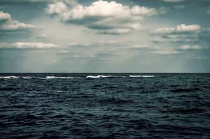 Mediterranean Frills by eslamelshatby
