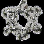 Star of David in white