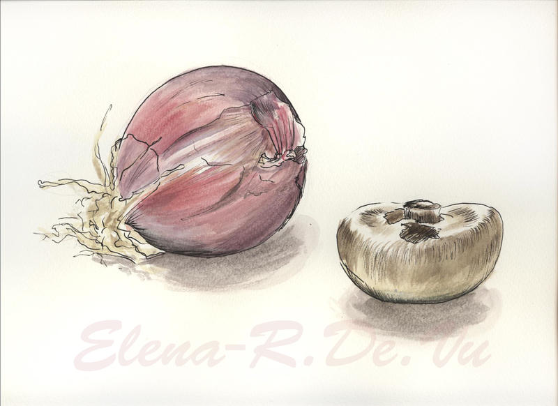 onion + mushroom by ElenaR
