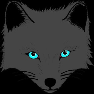DKGrayFox's Profile Picture