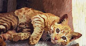 Morning cat- wallpaper by Komaro28