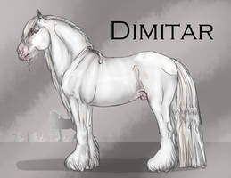 Dimitar by The-White-Cottage