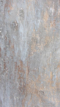 Old Painted Wood Texture Sample