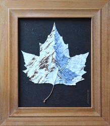 Snowy Leaf.