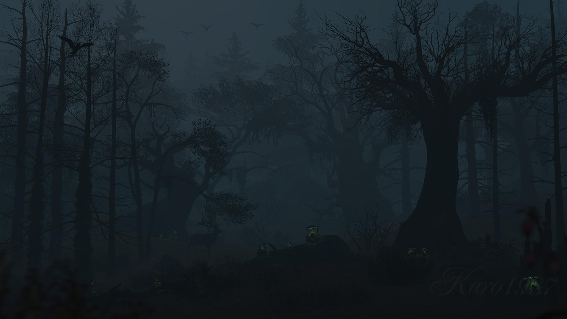 art dark car forest - photo #9