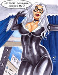 Black Cat Looking for MJ