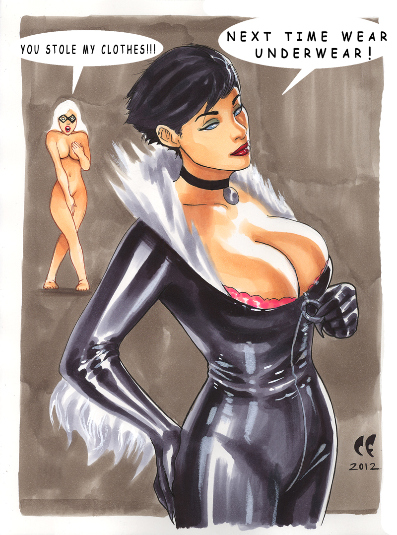 Catwoman Steals Black Cats Outfit By Daikkenaurora