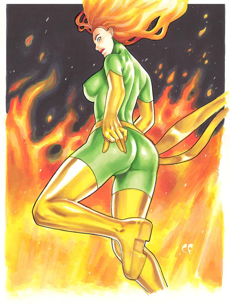 Phoenix Fire by daikkenaurora