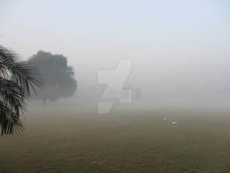 Morning in Punjab university