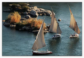 Let's take a felucca. by Yousry-Aref