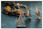 Let's take a felucca.