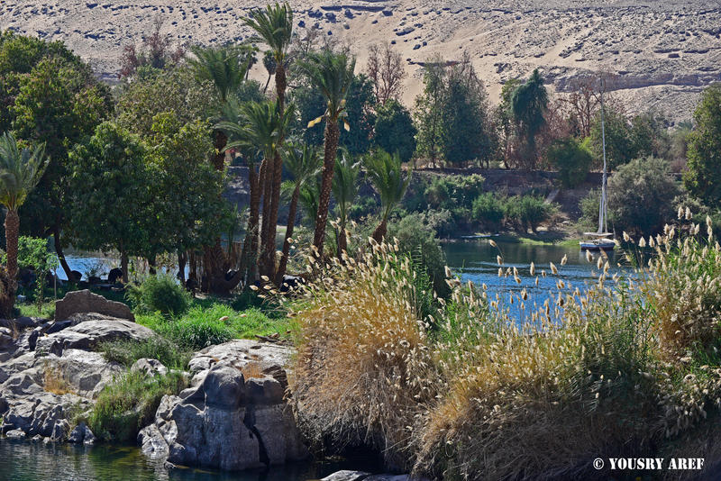 Aswan dreams by Yousry-Aref