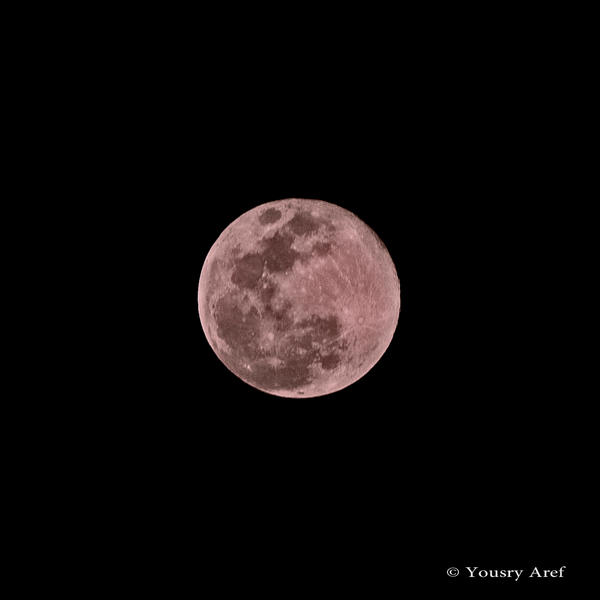 PINK MOON in Aswan by Yousry-Aref