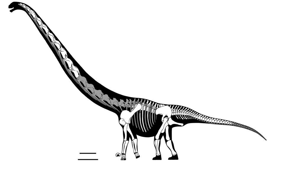 Chuanjiesaurus by javifel