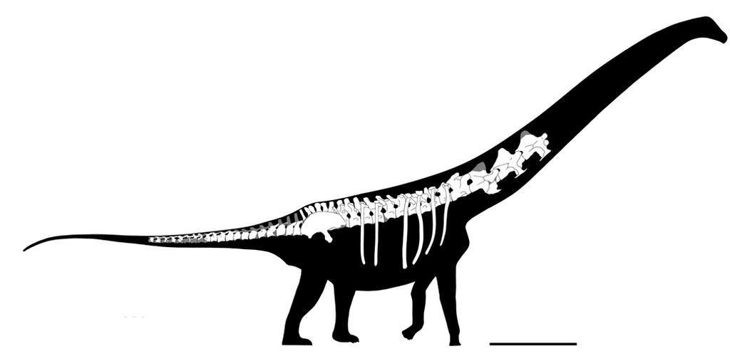 Overosaurus paradasorum by javifel