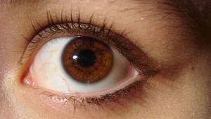 eye stock 1