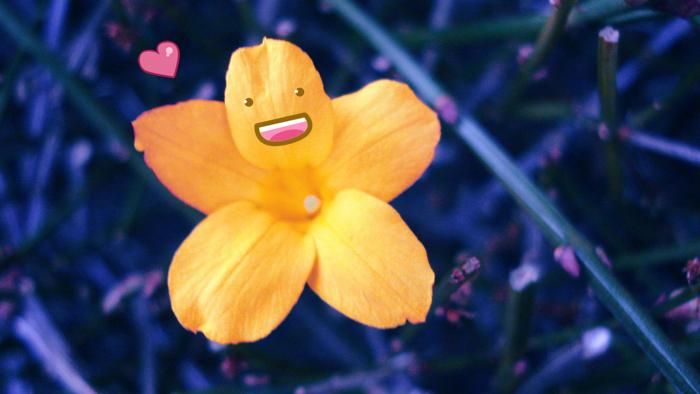 Happy Flower by viridis-somnio