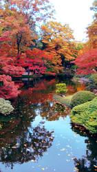 Autum in Japan by viridis-somnio