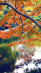 Flames Reflection by viridis-somnio