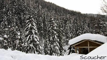 Hut by Scoucher