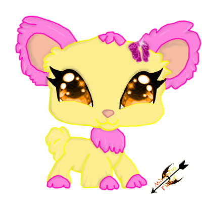 Winx Fairy Pet Cat With Wings Backgrounds