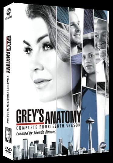 Greys Anatomy Season 14 Dvd By Whoviancriminal On Deviantart
