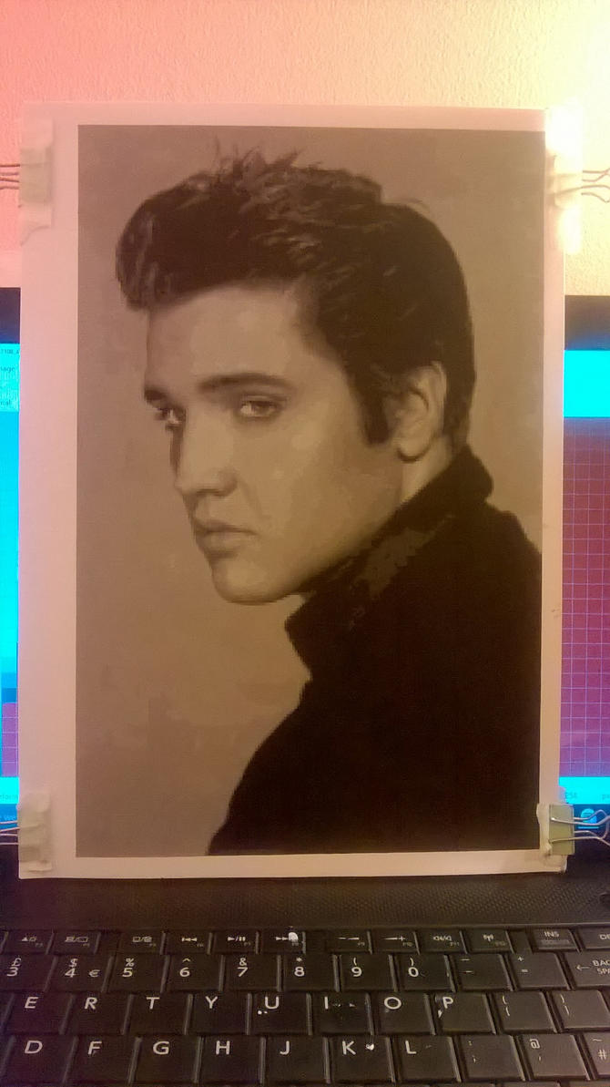 Elvis Presley A4 Pixel Painting by leb82