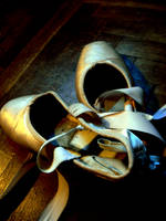 Ballet Shoes2 by SaphiraNirnaeth