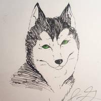 Inktober Day 6 -Husky