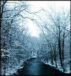 Desolate Winter III