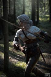 Zireael - The Witcher 3