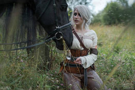 Ciri and Kelpie - The Witcher 3