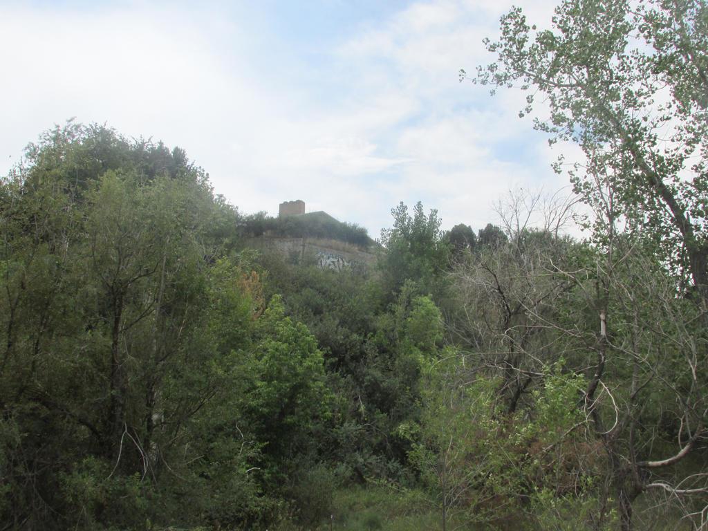 Green Hill by erynukiderp